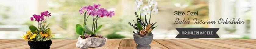 batıkent orkide siparişi, batıkent çiçek,