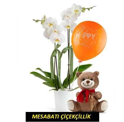 Balonlu Ve Ayıcıklı Orkide