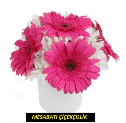 Seramik Vazoda Fuşyalı Çiçek