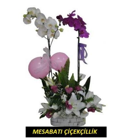 Aşk Orkidesi